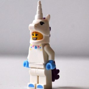 Searching for Unicorns - Blog Post